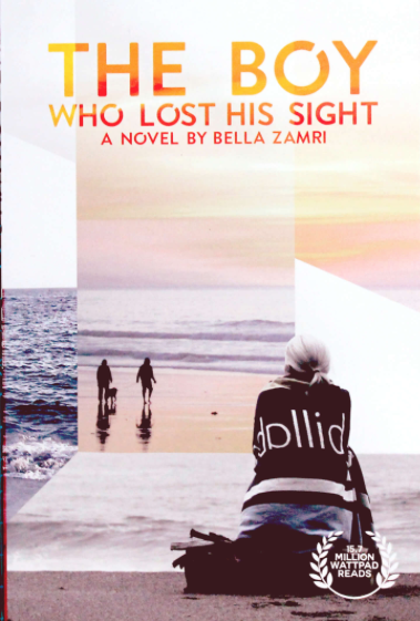THE BOY WHO LOST HIS SIGHT
